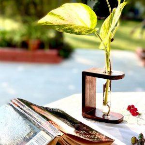 Table-top-planter-duo-set-handmade